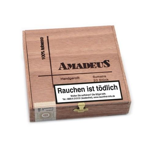 Amadeus Sumatra handgerollt 20 Zigarren